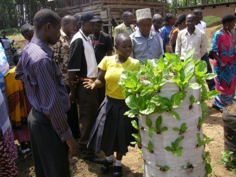 Kabyaile sack garden demo Domina VP15